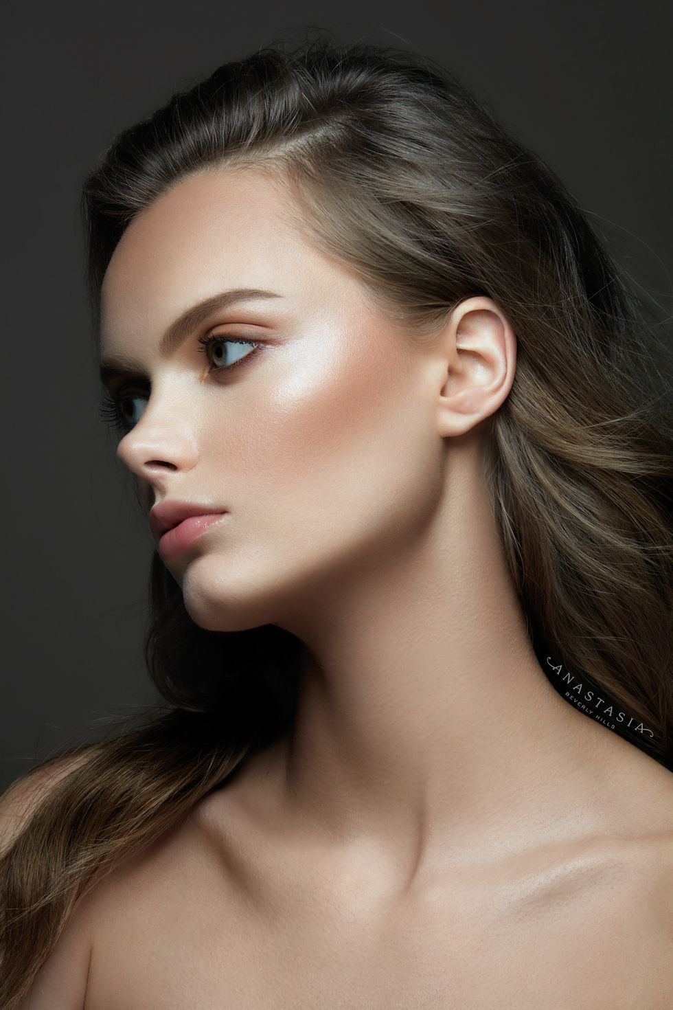 Anastasia Beverly Hills: Anastasia Beverly Hills Is Launching Its First Collection